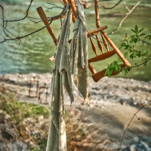 chair-hanging-from-tree