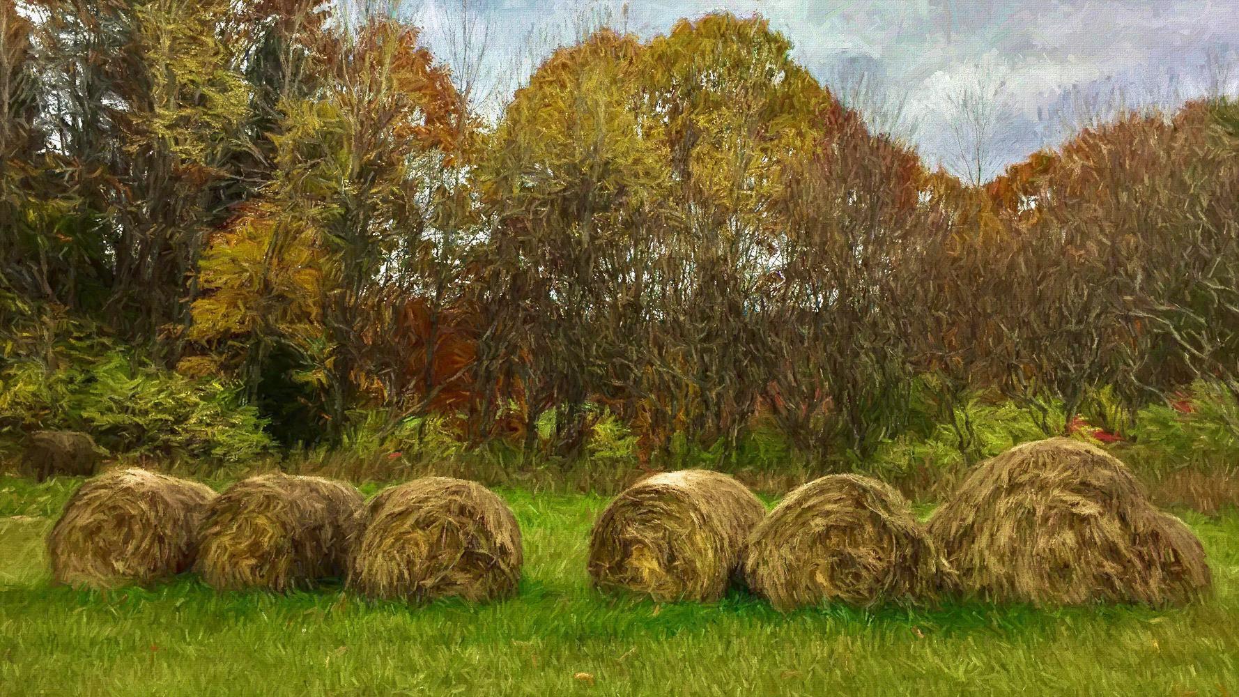 Hay bales, Quechee green belt field, Quechee, Vermont. Brush enhanced